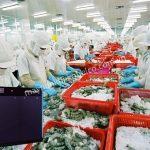 Máy nén khí trục vít không dầu được dùng nhiều trong ngành công nghiệp thực phẩm