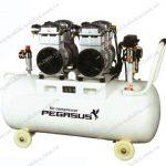 Máy bơm khí nén không dầu Pegasus được ưa chuộng dùng trong nha khoa