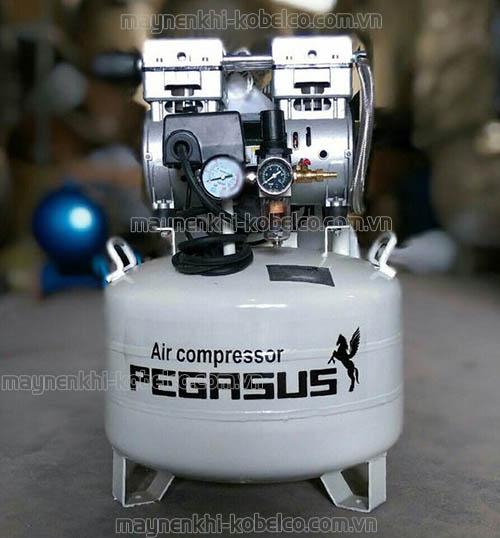 Máy nén khí Pegasus là sản phẩm rất đáng để bạn lựa chọn