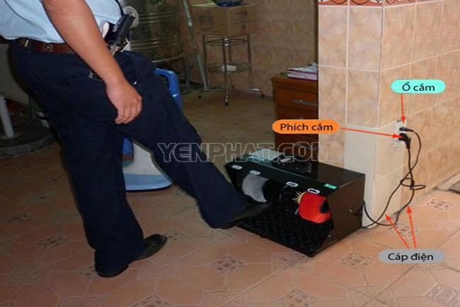 Máy đánh giày hiện đại